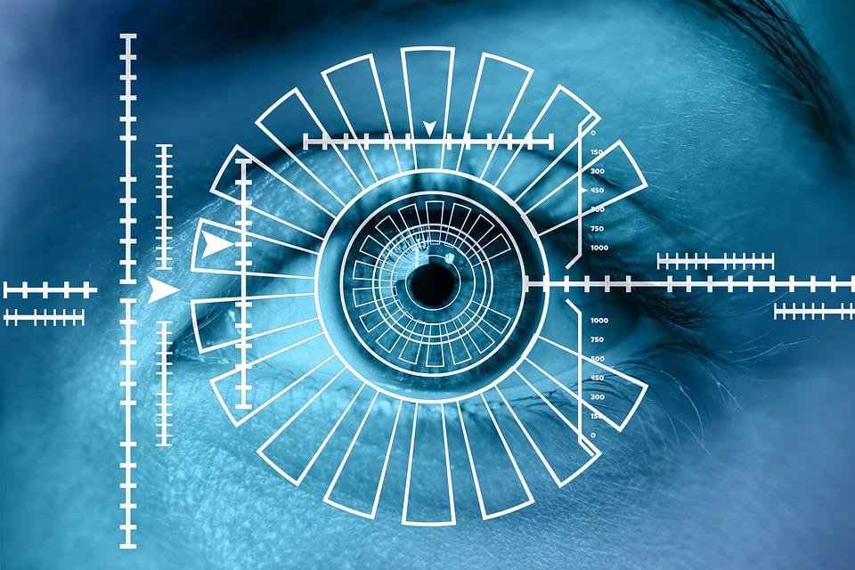 biometrisk pas