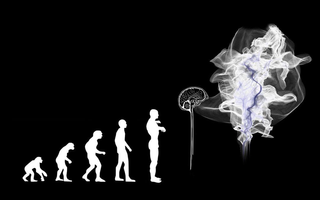 Kunstig intelligens bliver kæmpestort i 2019